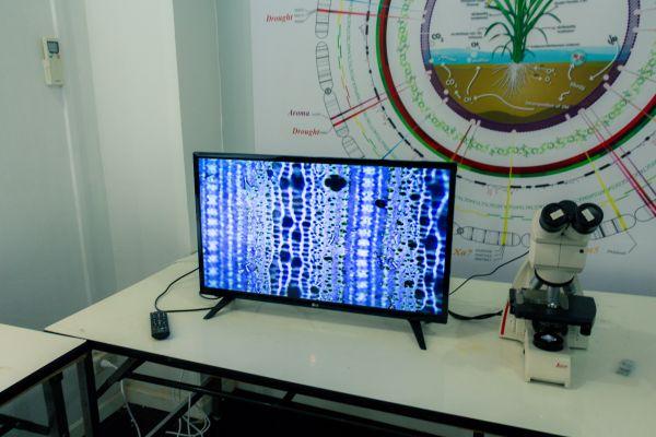 img-8451FC11B698-94AE-EC95-06E4-0D3437E0A43C.jpg